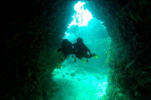 02-232-05-amazing_holmes-reef