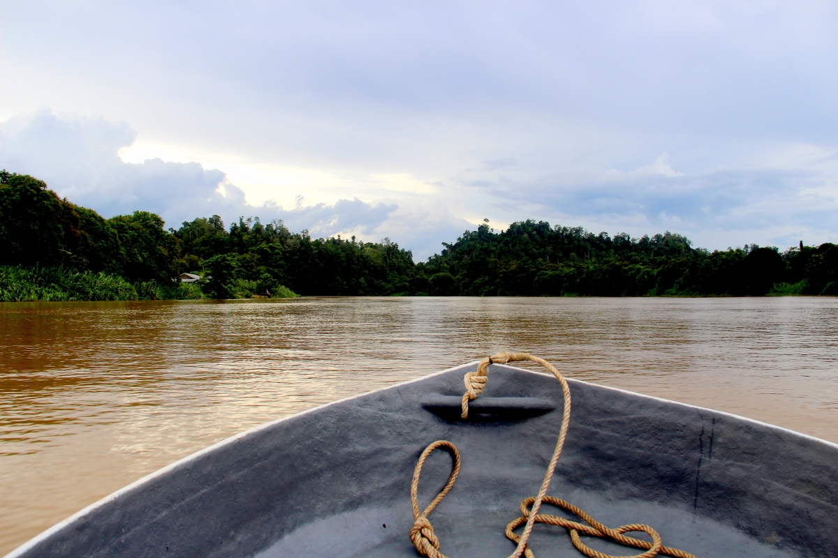 Kinabatangan on our own