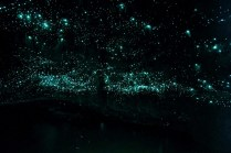 4-012-012-Spellbound Glowworms at end of cave