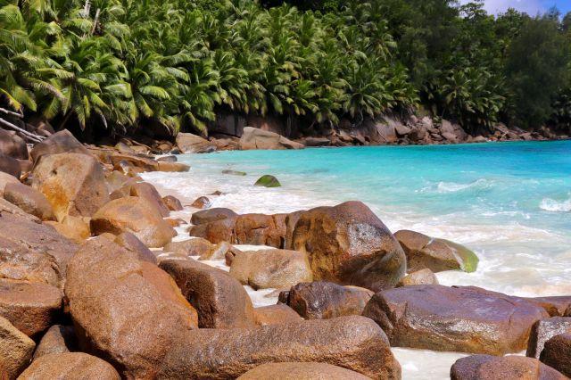 201905 Seychelles (16s)